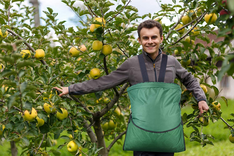 HANZIUP Large Fruit Picking Bag, Adjustable Harvest Garden Apron Storage Pouch for Harvesting Vegetables Big Fruits Apple Mango Pear Peach Mango Kiwi Lemon Cherry