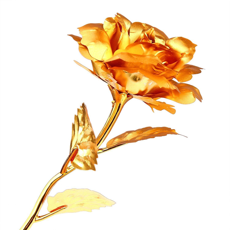 Onerbuy Kreatives Muttertagsgeschenk 24K Goldfolie Rosenblume Vollbl/ütengeschenke Romantisches Geschenk f/ür Sie mit Kasten Handgefertigt und Liebe Last Forever Blau