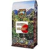 Java Planet, Organic Coffee Beans, Colombian Single Origin, Low Acid, Gourmet Medium Dark Roast of Arabica Whole Bean Coffee,