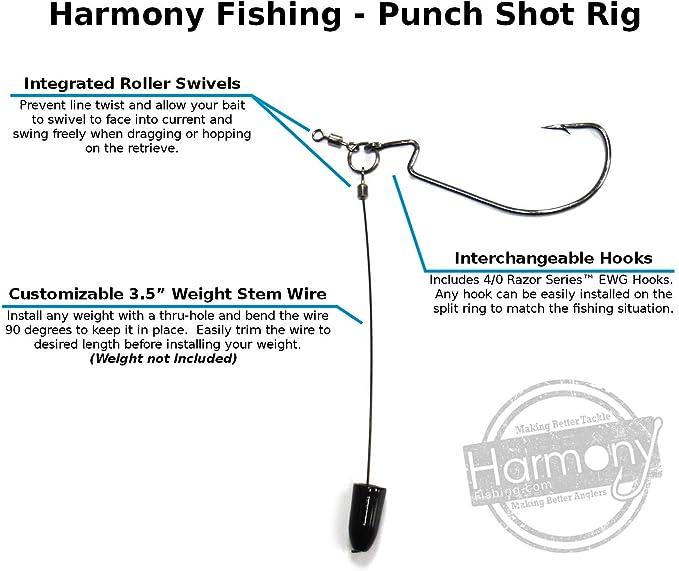 Lock EWG Hooks Punch Tokyo Rig Kit Fishing Tools Set Carp Terminal Tackle