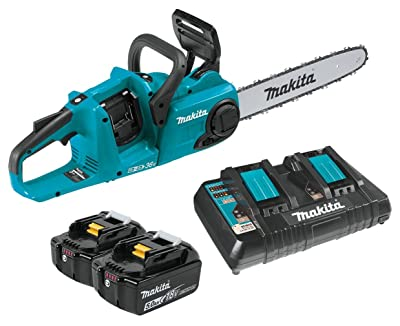 best cordless chainsaw for professionals