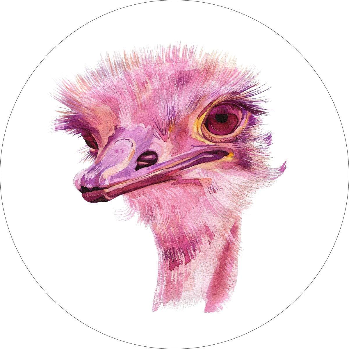 Ostrich Home Wall Shelf Decor Animal Decorations Watercolor Round Sign - 18 Inch, Plastic
