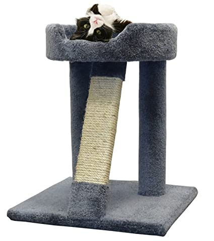 Amazon.com : CozyCatFurniture Wood Cat Scratcher | Made in USA | Large Bed | Unoiled Sisal Rope Pole | Gray Carpet : Pet Supplies