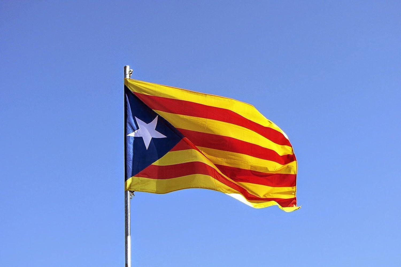 MI RINCON Bandera de CATALUÑA ESTELADA BLAVA 90 x 60cm - Bandera CATALANA INDEPENDENTISTA – Catalunya 90 x 60 cm: Amazon.es: Deportes y aire libre
