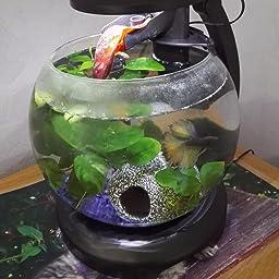 Tetra cascade globe blanche animalerie for Achat aquarium rond