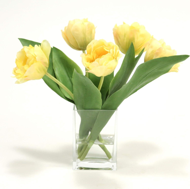 Amazon Com Distinctive Designs Waterlook Yellow Parrot Tulips In Rectangular Glass Vase Home Kitchen