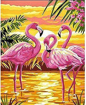 Yhwygg Diy Peinture Oiseau Rose Animal Diy Porno Numerique Art Mur Toile Moderne Peinture Cadeau Unique Decor A La Maison 40x50cm Avec Cadre Peinture Par Numero Amazon Fr Jeux Et Jouets