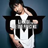 EXILE TRIBE PERFECT MIX