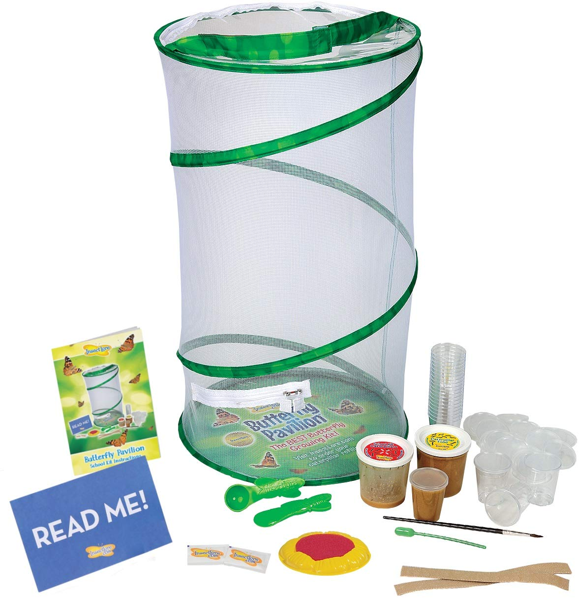 Insect Lore Deluxe School Kit with 33 Live Caterpillars