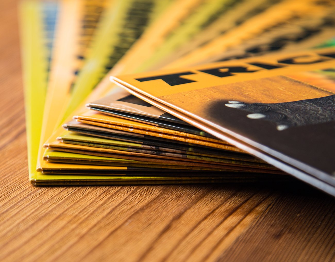 Two Pocket Folders Bulk 12 Pack Letter Size File Folders 6