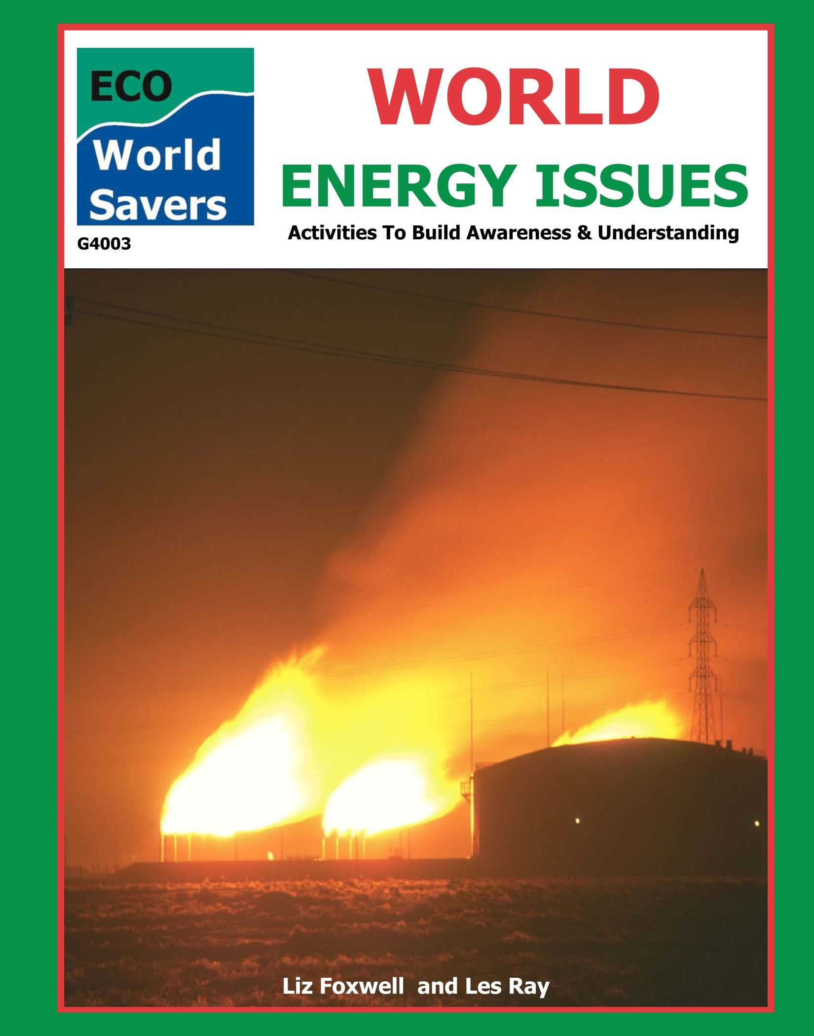 World Energy Issues (World Savers)