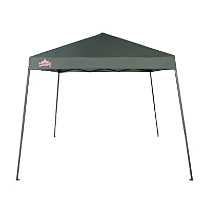 Backyard Champs Shade 64' 10'x10' Instant Canopy: Forest Green Top, Gray Frame: Sports & Outdoors