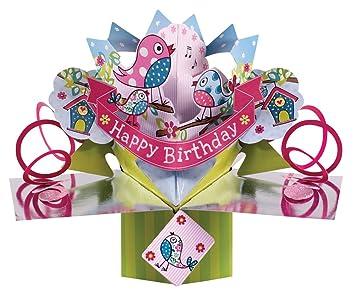 Second Nature POP063 - Tarjeta de felicitación para cumpleaños, diseño en 3D con pájaros, texto en inglés