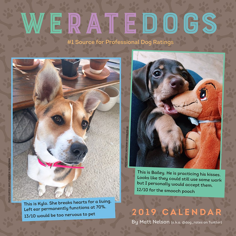 WeRateDogs 2019 Wall Calendar by Andrews McMeel Publishing (Image #1)