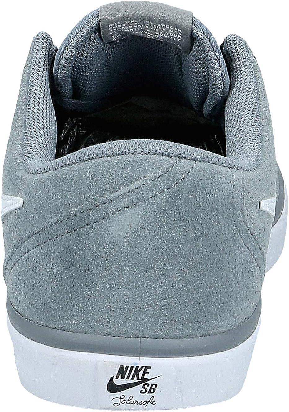Nike SB Check Solar, Chaussures de Skateboard Homme Gris Cool Grey White