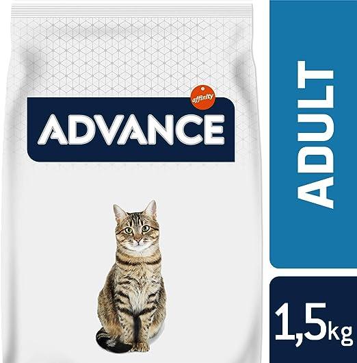 Advance pienso para Gatos Adult Pollo y Arroz: Amazon.es ...