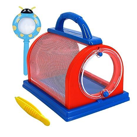 Jaula para insectos AiSi, para niños, para atrapar y ver insectos ...