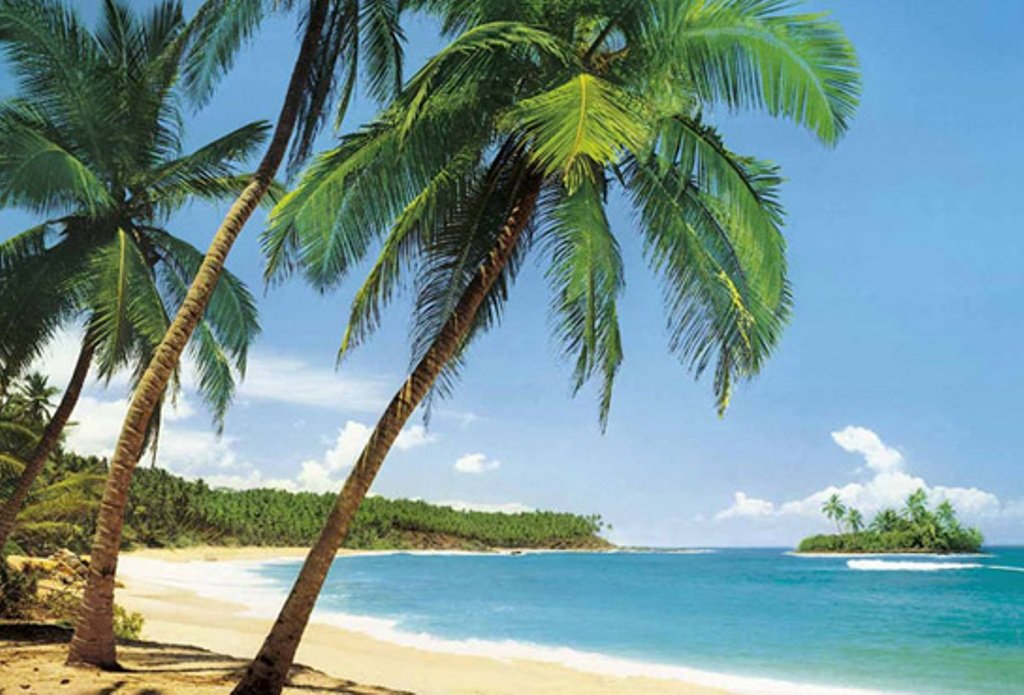 Tropical Island Beach Photo Wallpaper Wall Mural: Amazon.co.uk: Kitchen U0026  Home Part 33