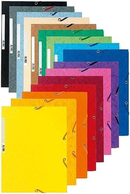 Exacompta 55500E - Pack de 50 de carpetas con goma, A4, multicolor ...