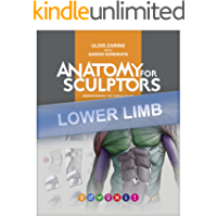 Lower Limb Anatomy For Artists: Understanding the human form (Anatomy For Sculptors Book 4)