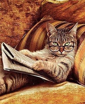 DIY 5d Diamond pintura por número Kit, Full Diamond lectura libro gato cristal rhinestone adornos de punto de cruz, diseño de bordado artes manualidades ...
