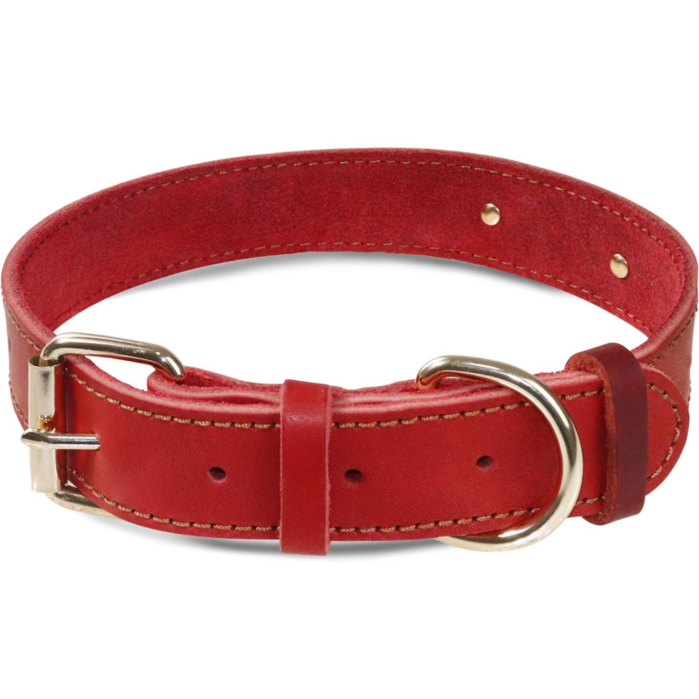 Taglory Collar Perro Personalizado Cuero,Placa de Identificaci/ón Grabada con Nombre y N/úmero de Tel/éfono,Collar de Perro Extra Grande,Rojo Coral