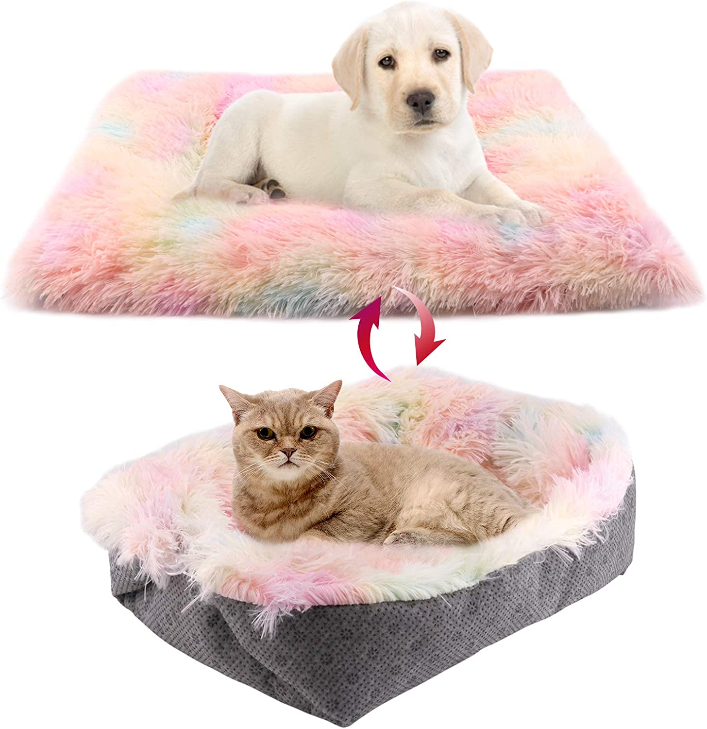 Cat Mat Multicolor animal lovers gifts small dog mat