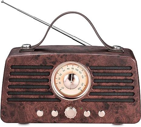 Radio Vintage Style Bluetooth V4.0 Support FM TF Card Wireless Mini Speaker Fnsky Raido Mini Speaker Greadio FM Radio for Phone Vintage Radio
