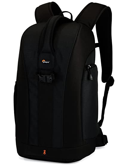 d786bc42579 Amazon.com : Lowepro Flipside 300 DSLR Camera Backpack : Hiking Daypacks :  Camera & Photo