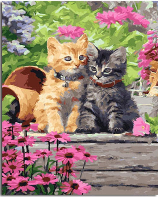 qhzcj Bricolaje Pintura al óleo por Números Pintura Gatito de ...