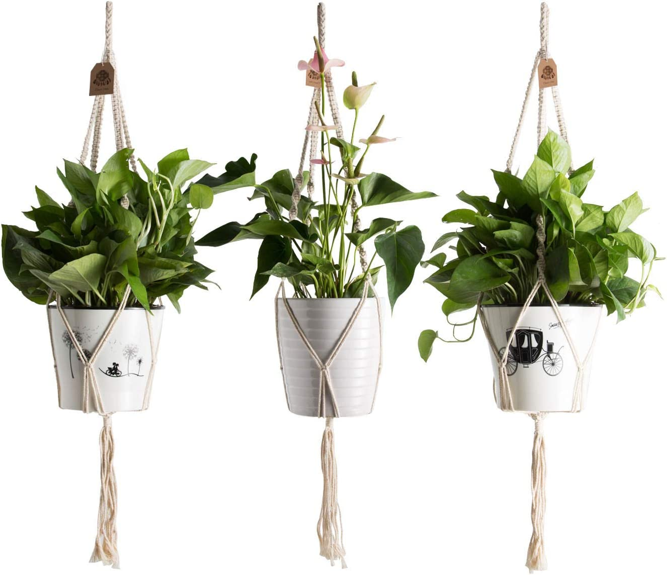 TOUCH MISS 3 Pcs Macrame Plant Hanger Indoor Outdoor Hanging Planter Basket Wall Cotton Rope Bohemian Home Decor 4 Legs 35.5 Inch Creamy White