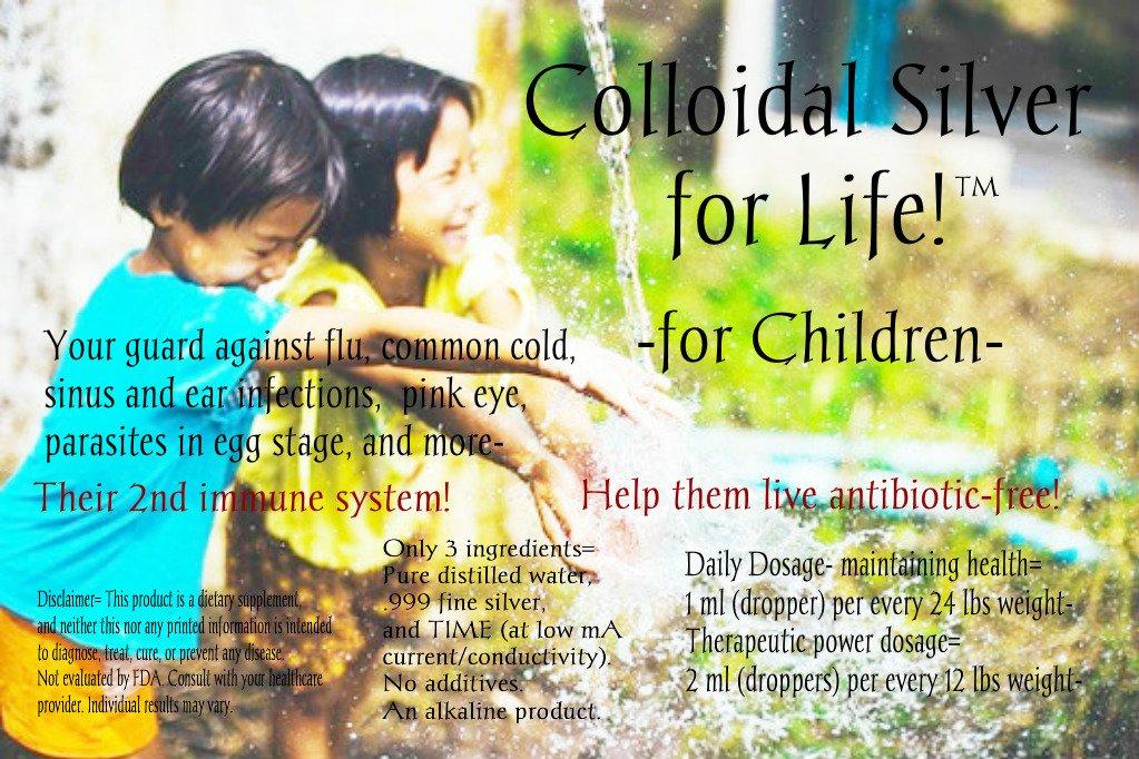 Amazon.com: Plata coloidal for Life para niños 16 ounce ...