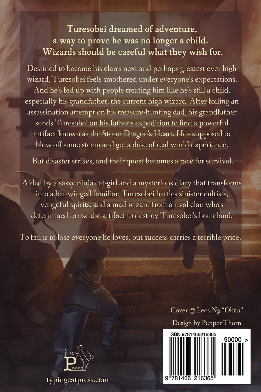 The Storm Dragons Heart: Volume 1 (Storm Phase): Amazon.es ...