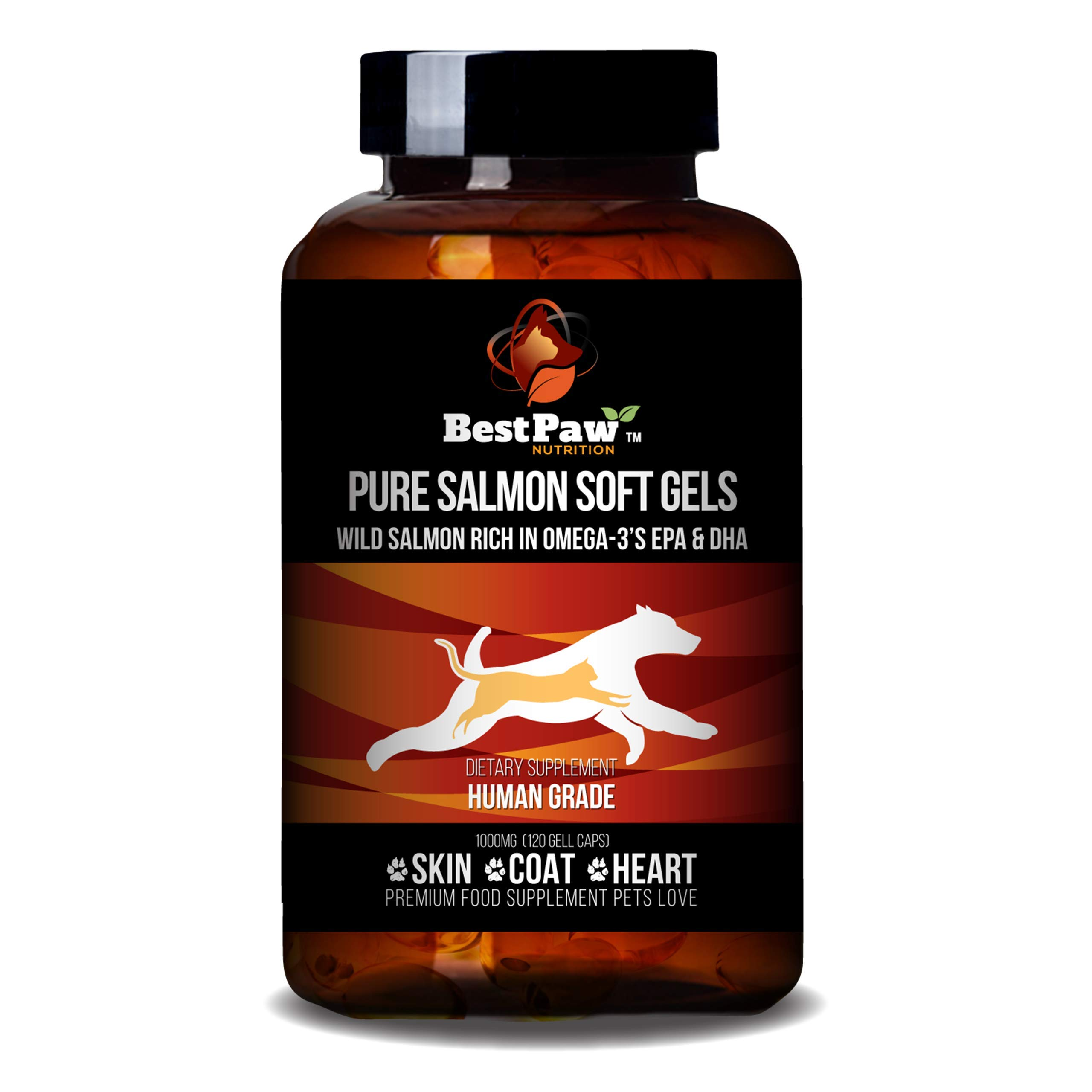 Best Paw Nutrition Pure Wild Alaskan Salmon Oil for Dogs & Cats Allergy, Dry Itchy Skin, Hotspots, Joint Pain Relief by Best Paw Nutrition