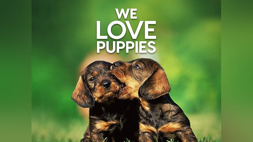 We Love Puppies - Season 1