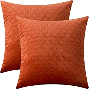 Rythome Set of 2 Decorative Pattern Throw Pillow Cases, Comfortable Quilted Velvet Cushion Covers for Sofa Couch and Bed - 20