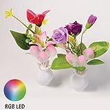 Night Light- 2 PCS, SunBeter Automatic Light Sensor Switch RGB Free Color Scene Night Ligh