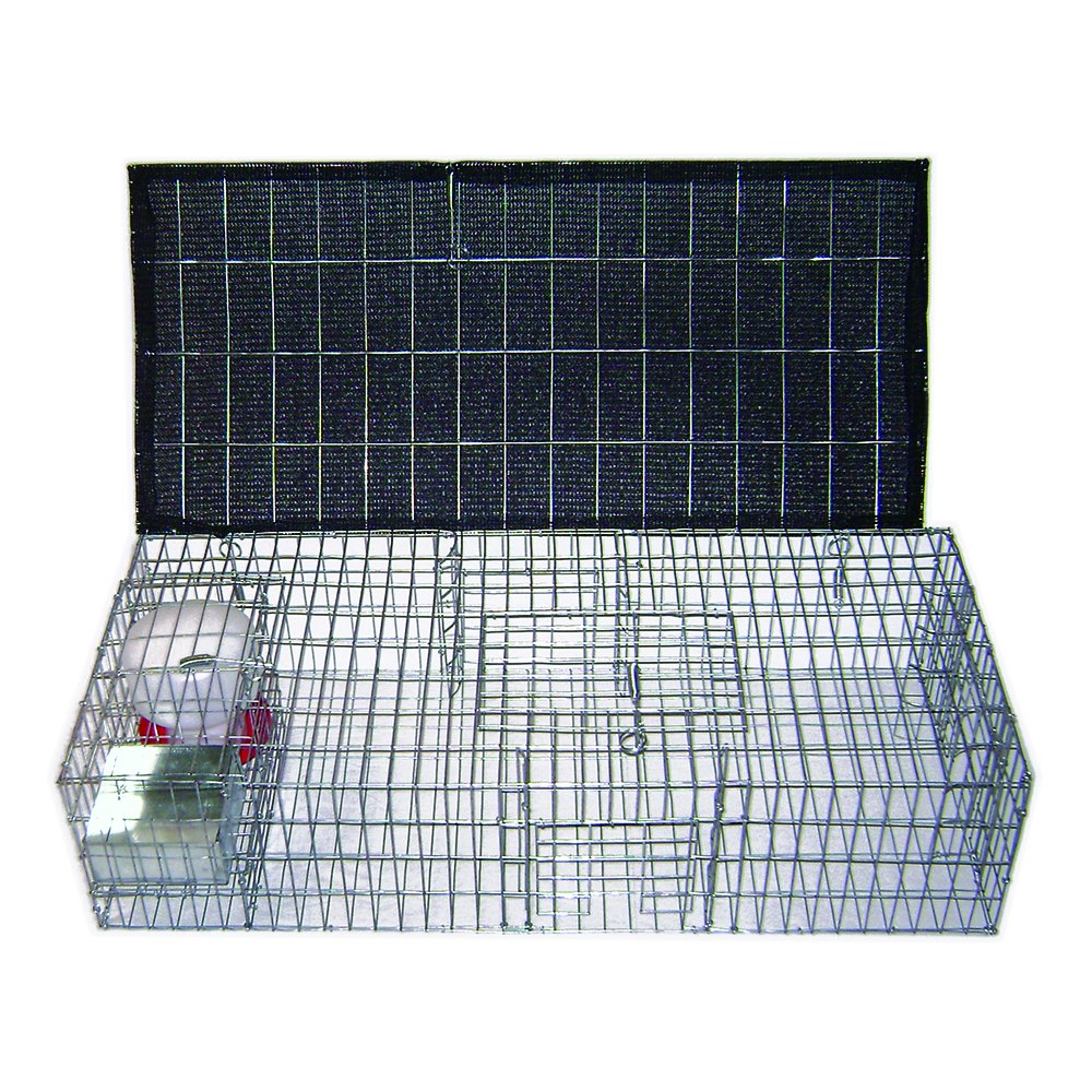 Bird B Gone Pigeon Trap with Shade, Food and Water Containers by Bird B Gone