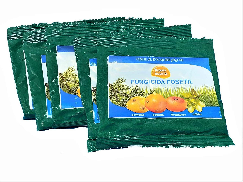 Todo Cultivo Fungicida Fosetil 80%. Tratamiento válido para 100 litros de Agua. Utilizado para Combatir Hongos como gomosis, mildiu, aguado, fitophtora (5 Sobres de 50 Gramos)