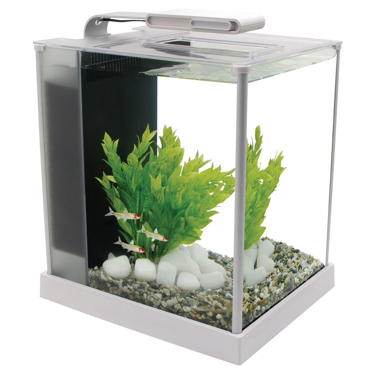 Amazon Fluval Spec III Aquarium Kit 2 6 Gallon White