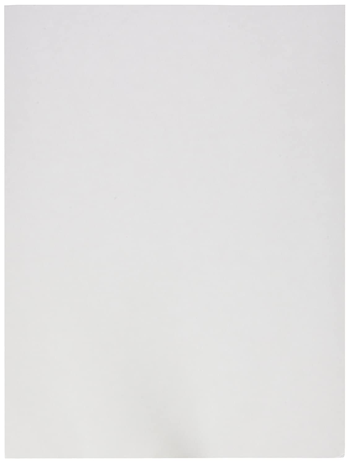 Pacon Heavyweight Tagboard, 9x12-Inch, White, 100-Sheet (5211) Pacon Corporation