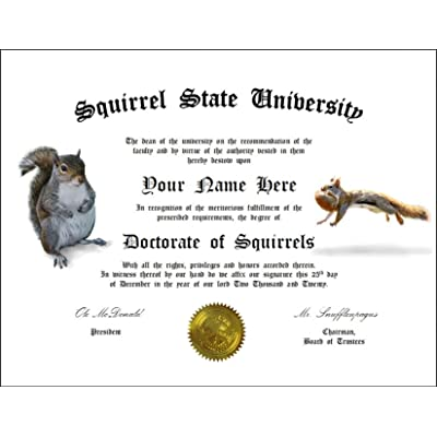 Creative Displays Personalized Squirrel Degree: Custom Gag Diploma Doctorate Certificate (Funny Customized Joke Gift - Novelty Item) We add The Name and Date of Your Choosing.: Toys & Games