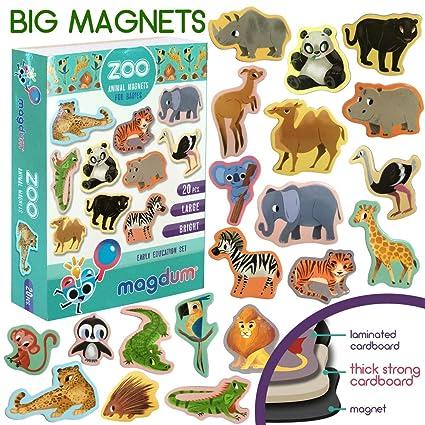 MAGDUM Imanes Animales Zoo de Pizarra Infantil para niños - Imanes ...