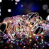 Salcar LED colorati corda leggera a 10 metri / 33 piedi 100 diodi all'interno filo di rame Micro per le feste di Natale per la decorazione di feste (RGB)