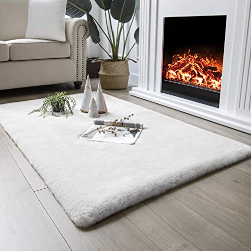 Ashler Ultra Soft Faux Rabbit Fur Chair Couch Cover Area Rug