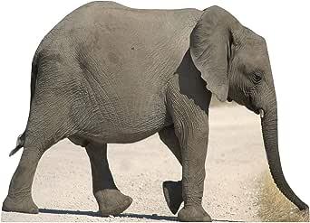 Partyfest - Disfraz de elefante (SC69)