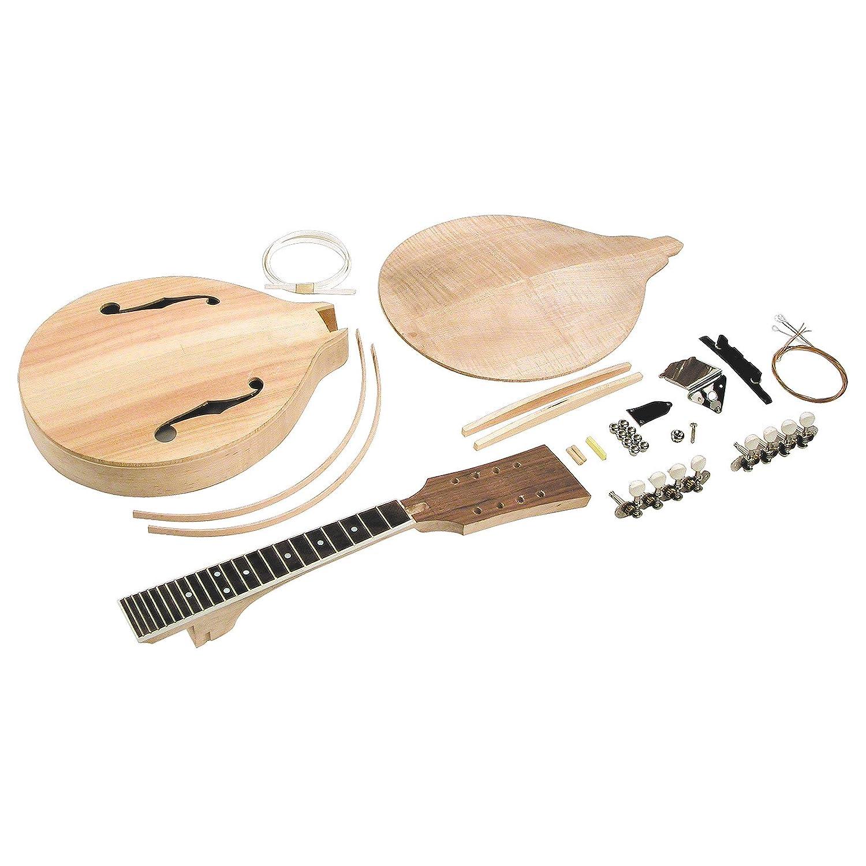 Amazon saga am 10 a model mandolin kit musical instruments solutioingenieria Images