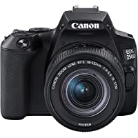 Canon EOS 250D + Canon EF-s 18-55mm f/4-5.6 IS STM Lens - Black