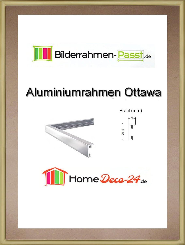 Amazon.de: Bilderrahmen Ottawa Echt Aluminium Posterrahmen 40x100 cm ...