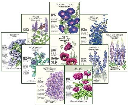 Amazon.com: Botanical intereses morado flor de la pasión y ...